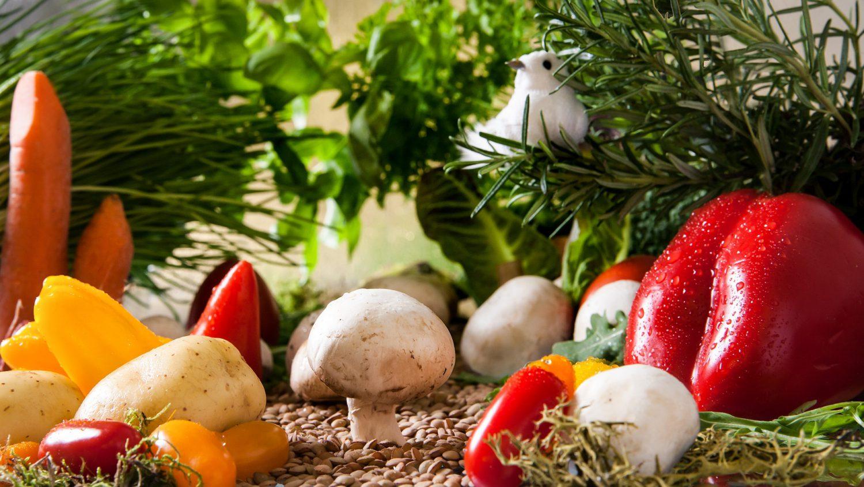 Mes recettes de saison : parce que mieux consommer, c'est faire plus pour la planète !